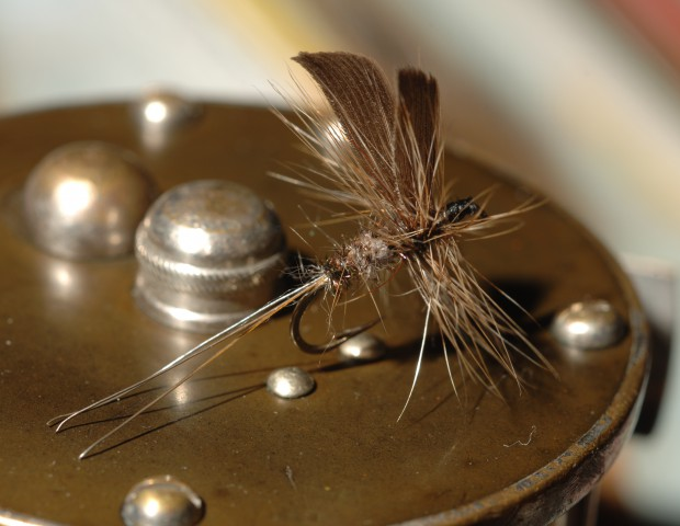 Charles DeFeo dry fly