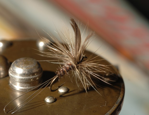 DeFeo dry fly